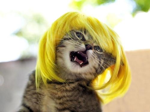 perucas