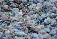 Plastic Waste Can Now Transform Into Petrol, Diesel