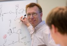 Chemistry professor Wilfred van der Donk and his colleagues developed a new method for generating large libraries of unique cyclic compounds. Photo by Don Hamerman
