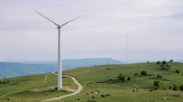 Striking the right balance between wind energy and biodiversity