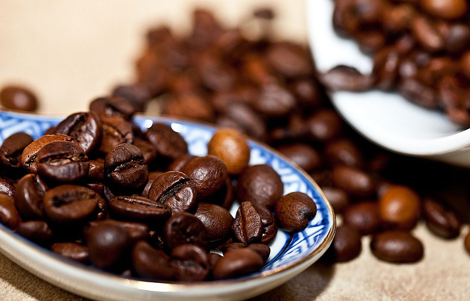World's most popular coffee species are going extinct, study