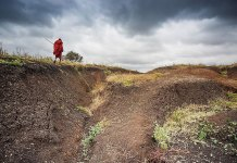 Interdisciplinary approach the only way to address devastating effects of soil erosion
