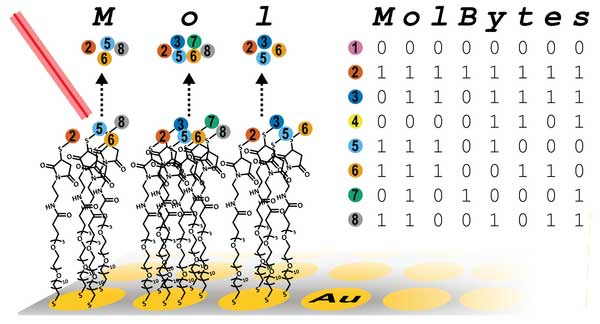 "Pairing molecule mass and binary code, the Whitesides team can ""write"" massive amounts of data Credit: Michael J. Fink"