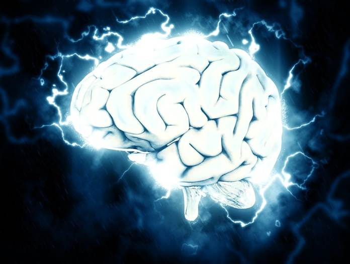 How the human brain is able to determine the properties of a particular object?
