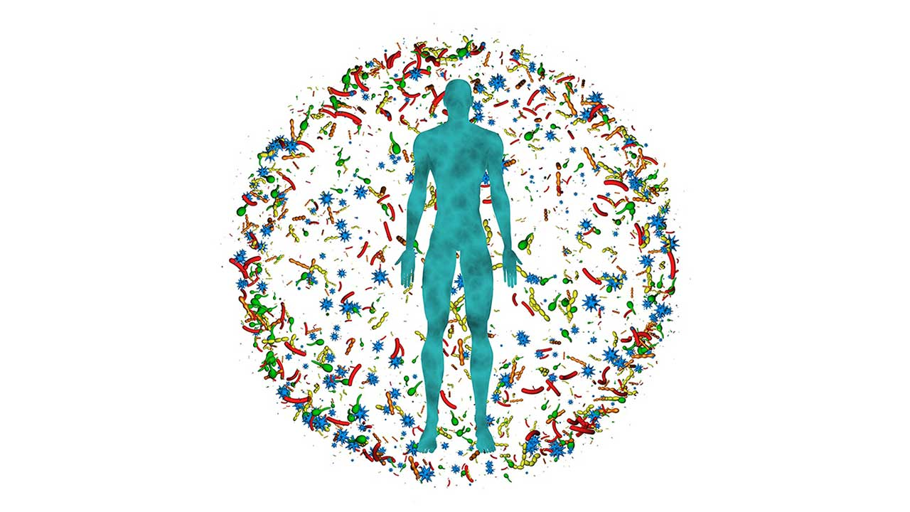 Bringing out human microbiome-prakriti correlation