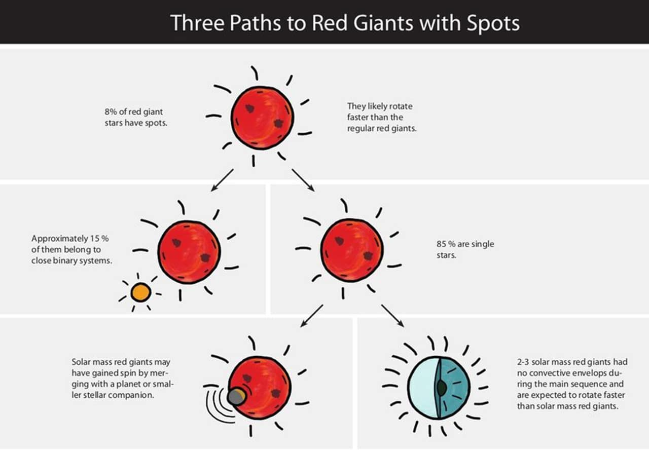 Eight percent of red giants exhibit starspots