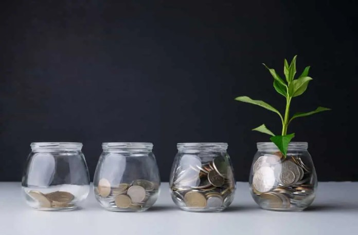 Plant growing on coins in glass jar. Increasing quantity of cash, startup, money growth concept. Prostock-studio / Shutterstock.com