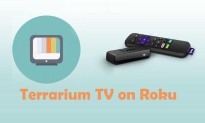 Terrarium TV on Roku