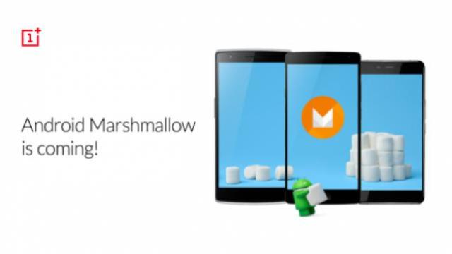 marshmallow_Forum-624x351.png