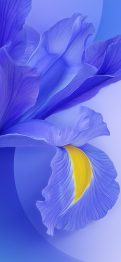 redmi-k20-pro-purple-flower-wall-TechFoogle
