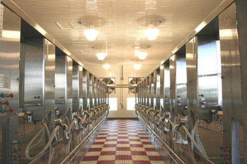 UsedRemanufactured Germania HerringBone Milking Parlor