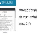 Display File pdf on web site