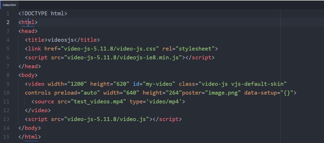 code_videosjs