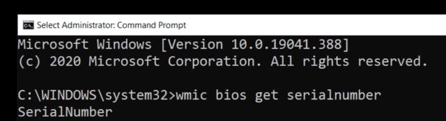 W10 CMD Serial Num
