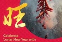 Catch up on free TV this Lunar New Year with StarHub, Singtel, Netflix