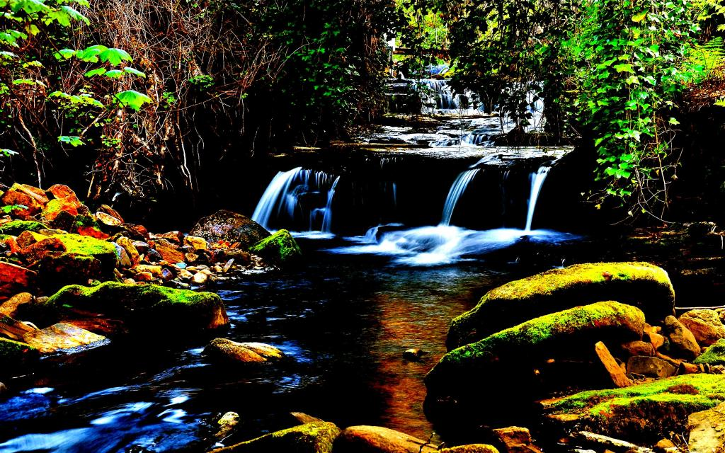 Forest waterfall wallpaper for Mac