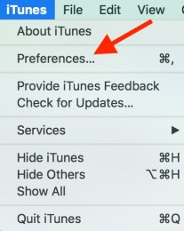iTunes Prefrences