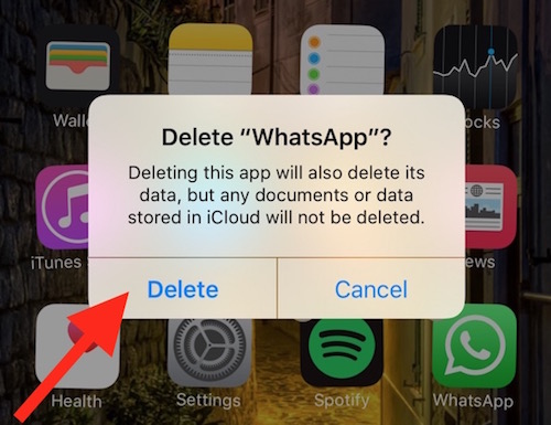 Delete App from iPhone