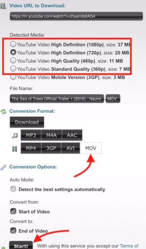 Get YouTube Download Link
