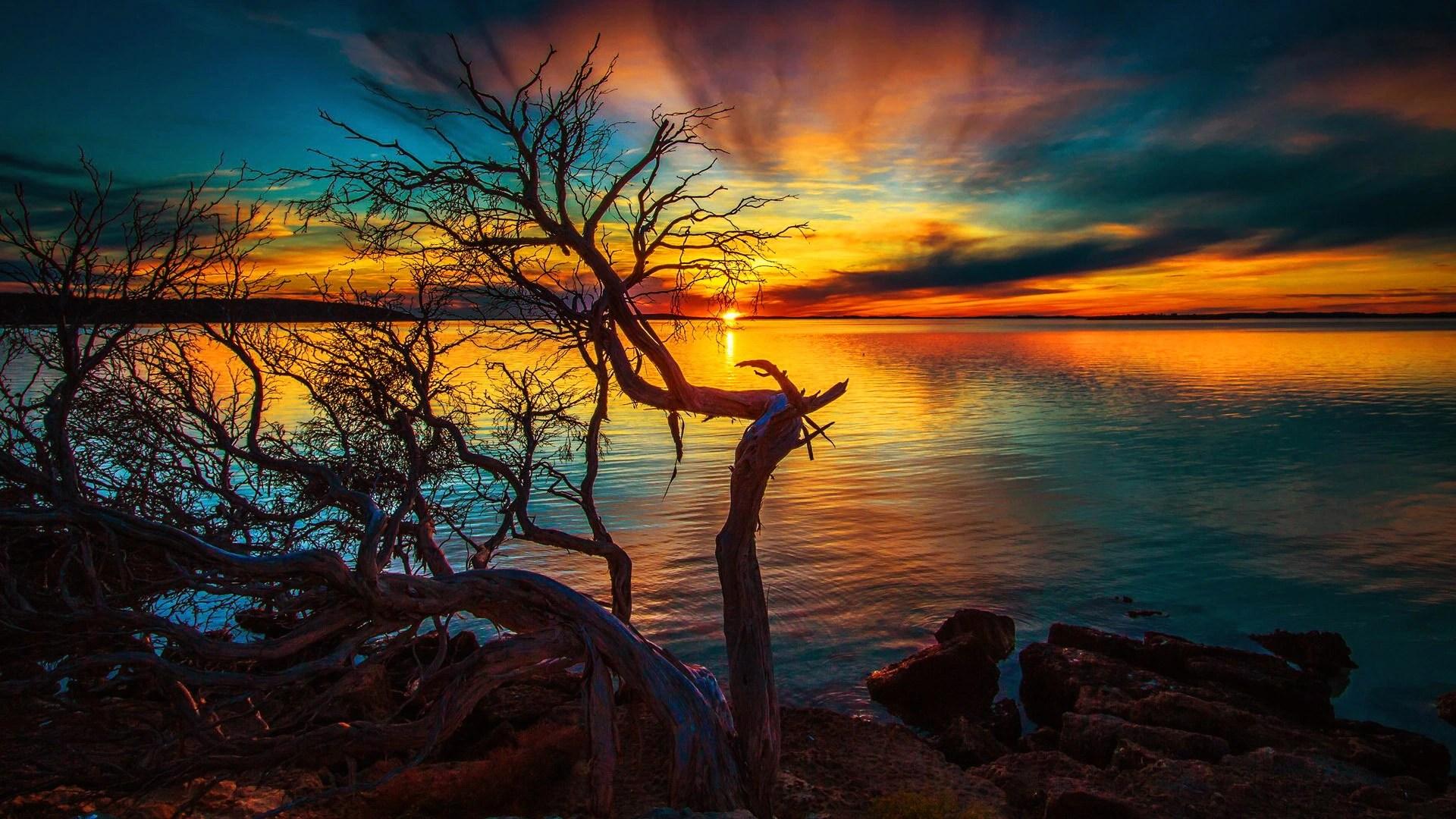 nature evening sunset wallpaper