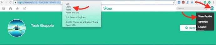 copy-vine-profile-link