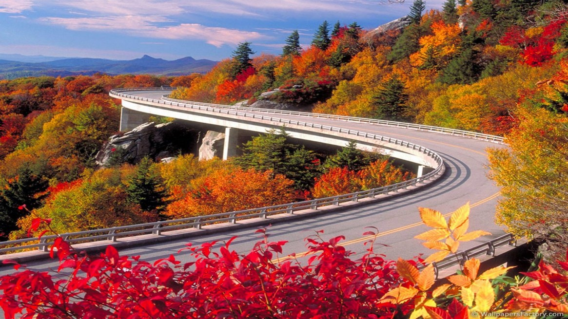 fall-wallpapers-road