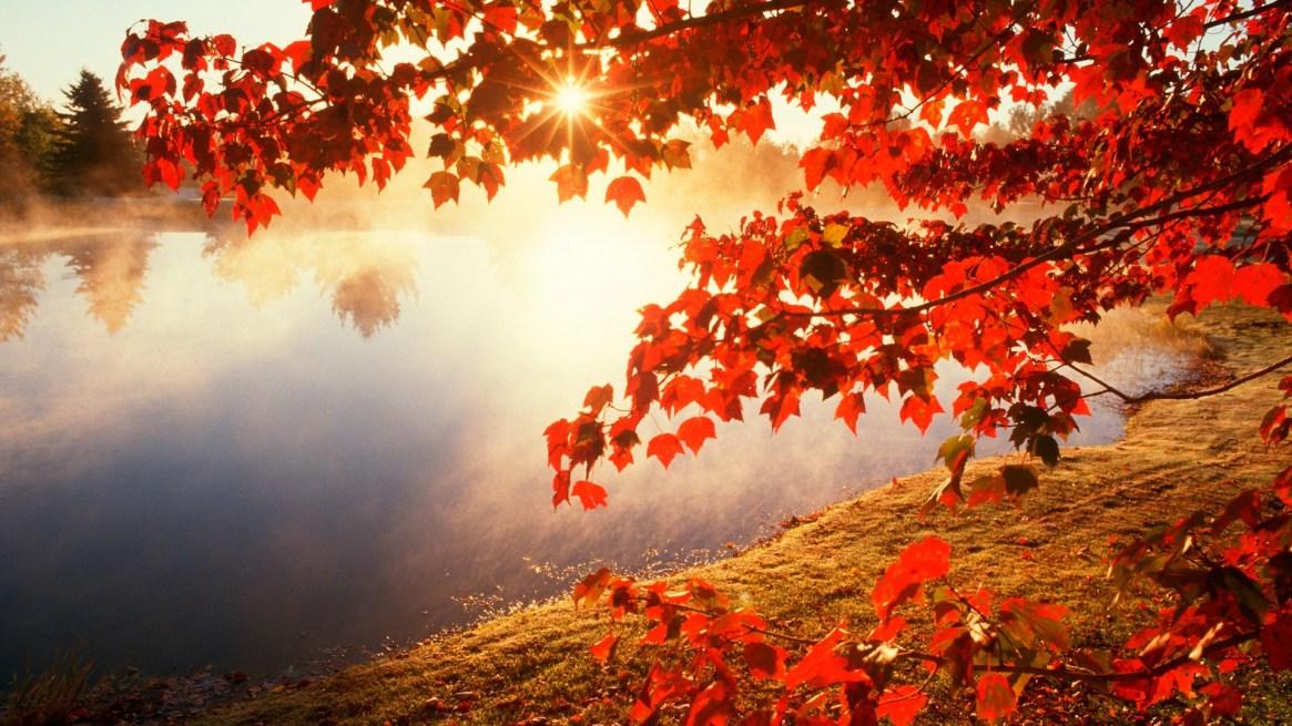 autumn-wallpapers