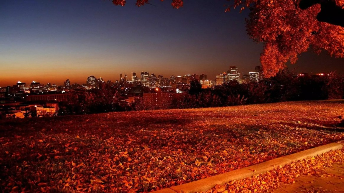 fall-background-red