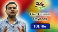 Own Colunm Daybook (Tally ERP 9 Add-on .tdl File)