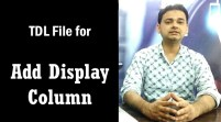 Add New Display Column in Voucher Entry (Tally ERP 9 Add-on .tdl File)