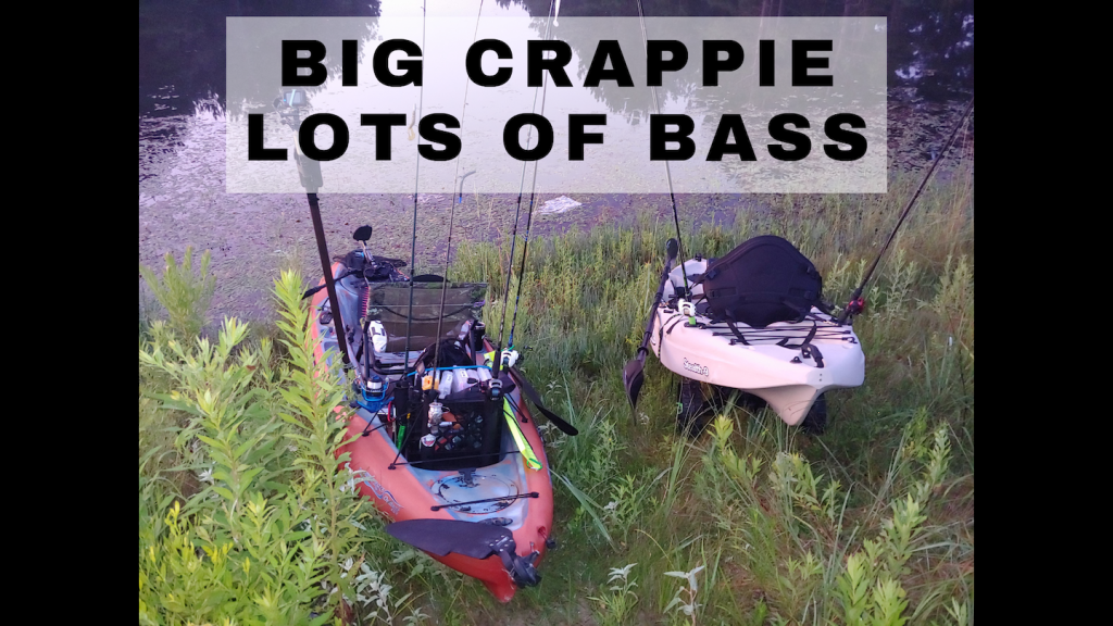 Big Crappie Lots of Bass