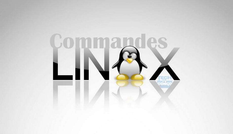top-commandes-linux