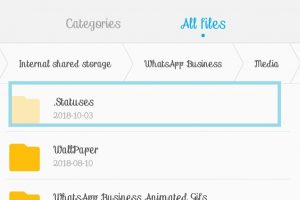 Download whatsapp status media