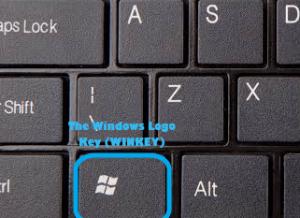 Windows Logo Key Winkey