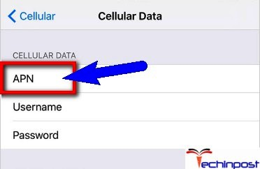 Correct the APN Settings Could Not Activate Cellular Data Network