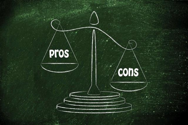 PUPPYOO WP536 Pros and Cons