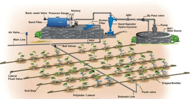 Automating Irrigation Systems