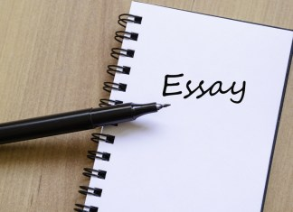 Things To Remember While Essay Writing
