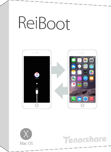 iPhone Stuck on Apple Logo, Quick Fix 09