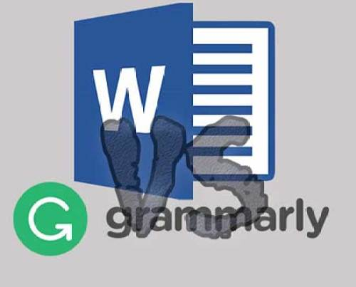 Grammarly vs Microsoft Word - Performing Different Tests on