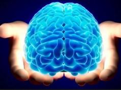 Inside Geek brain