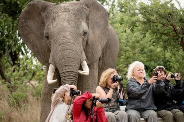 Africa Tourism on Social media 2