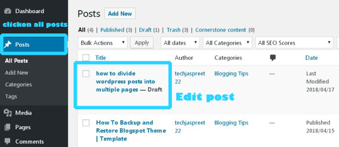 divide your WordPress blog posts into multiple pages