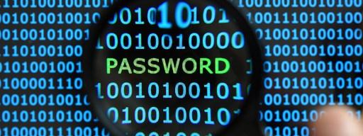 Pony Botnet Password Hack