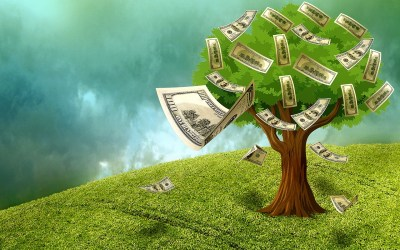 Cash Tree