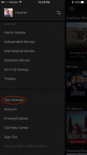 Netflix mobile App settings