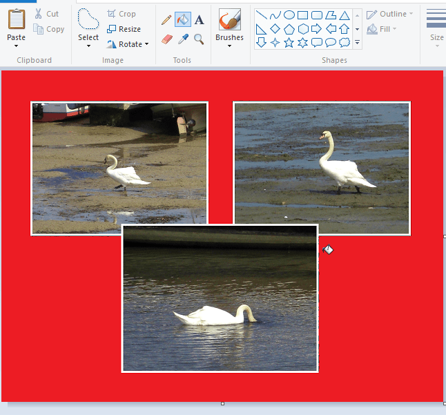 How to Edit Images with Paint and Photos in Windows 10