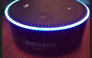 How to use Fitbit Skill with Amazon Echo