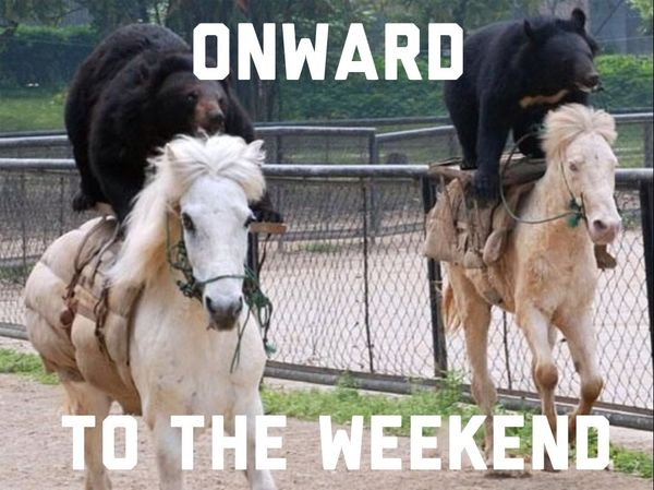 Onward to the weekend