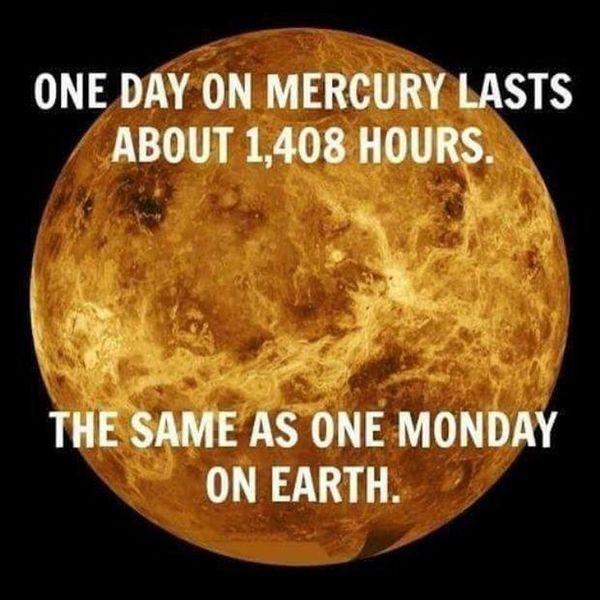 так же, как один понедельник на земле